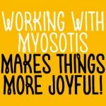 Myosotis Regular