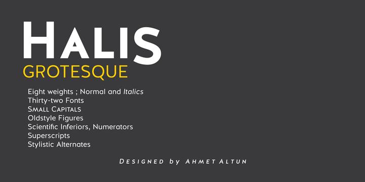 Halis-Grotesque-Font-by-Ahmet-Altum